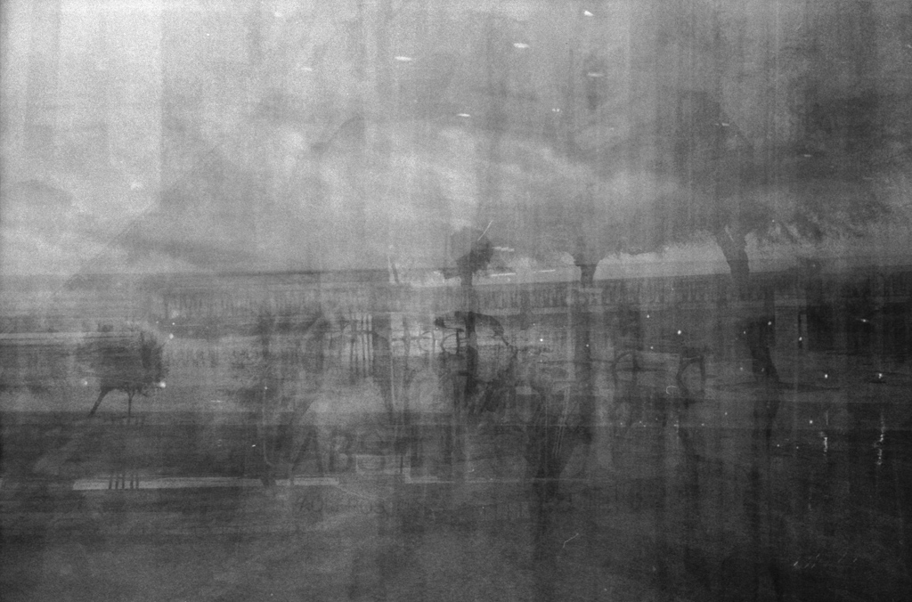 © Lilly Schwartz 2013