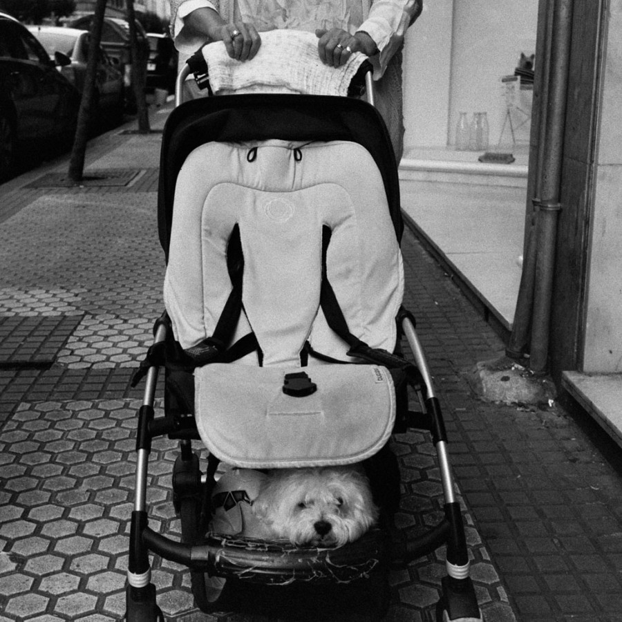 © Lilly Schwartz 2015