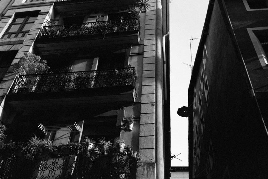 © Lilly Schwartz 2016